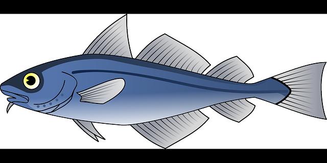 Mengenal Habitat Asli Ikan Arwana Silver